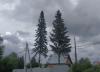 В Челябинской области – резкое похолодание и мокрый снег
