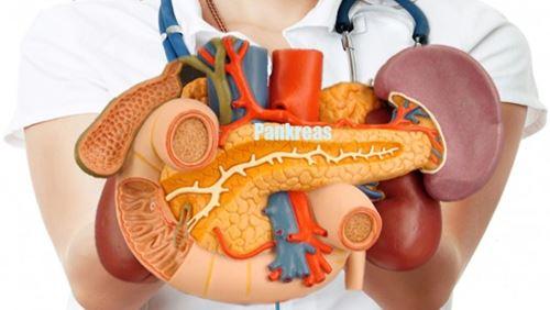 Pankreas – Definisi dan Penyakit Terkait