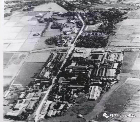 Longhua road