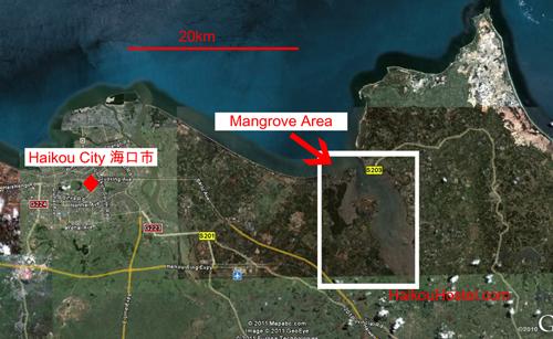 map of Mangroves near Haikou
