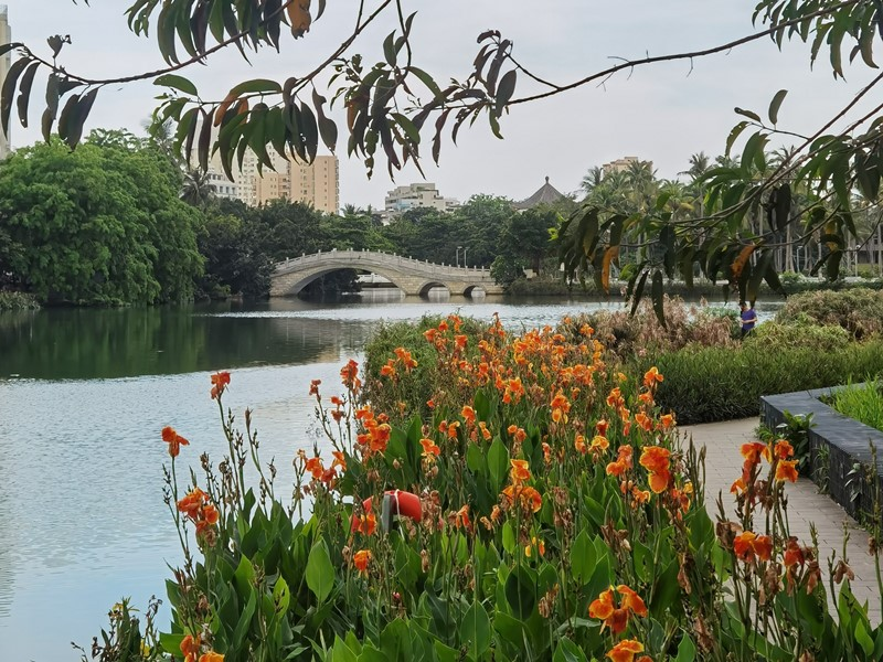 East Lake next to Renmin Park