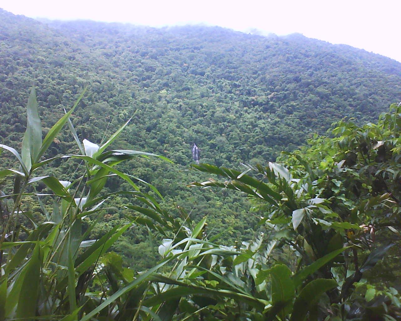 Diaoluoshan Nature Reserve