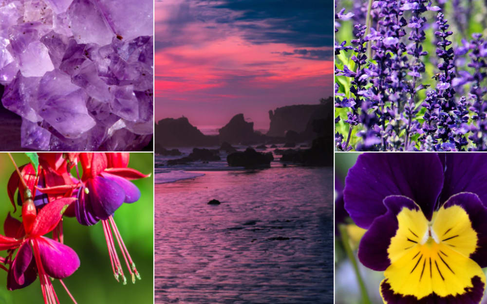 5 nature-inspired pairings with Ultra Violet