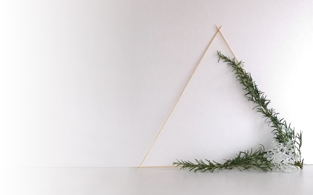 Minimal Christmas: foliage wreath step by step