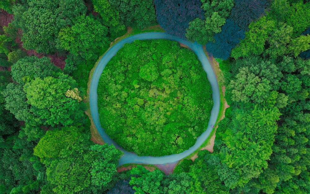 Circular economy: the ultimate form of sustainability