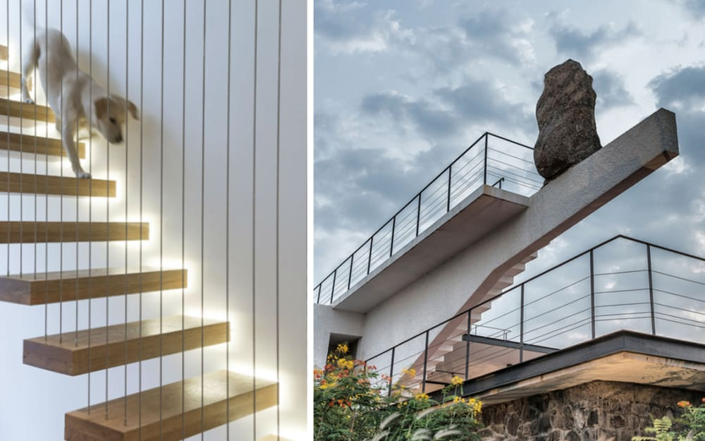 """Biophilic moodboards: the benefits of """"risky"""" interiors"""