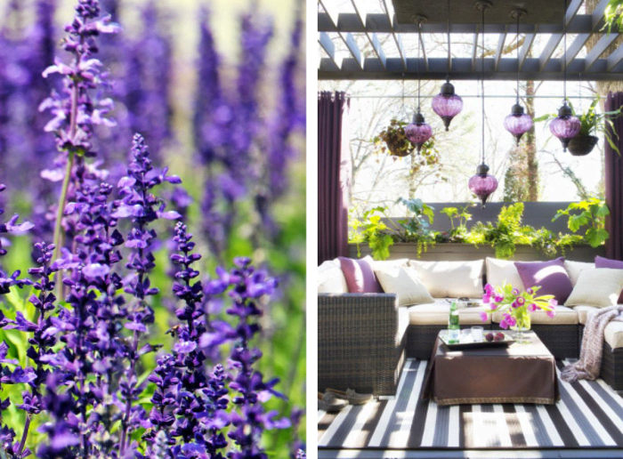 Uses of violet and green in nature and in interiors. Nature: lavender field. Interior: outdoor patio in the tones of white, brown and violet, surrounded by bright green plants.