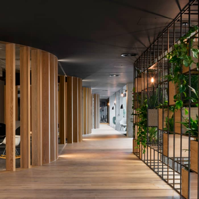 Slack European Office, which applies biophilic design using wood partitions and plants.