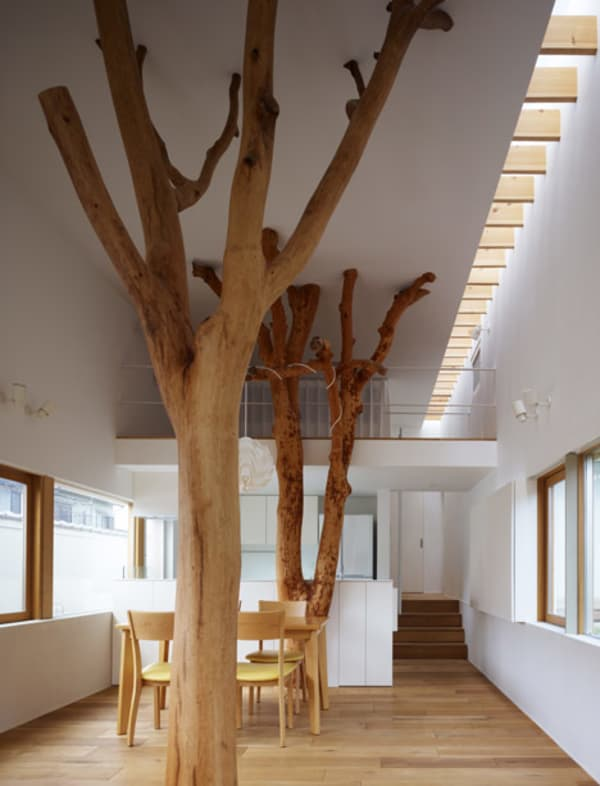 Dining room with trees being part of the interior design, stunning application of biophilic design.