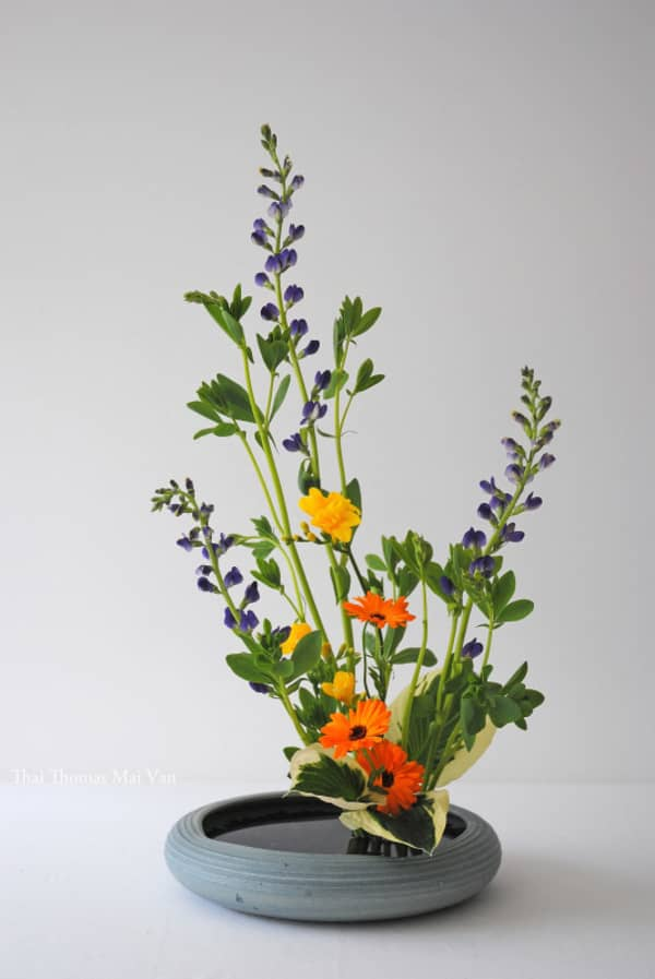 Summer Ikebana arrangement (Moribana).