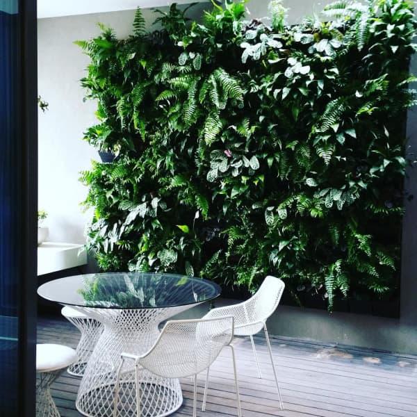 Chair in a veranda with a huge vertical garden as a backdrop.