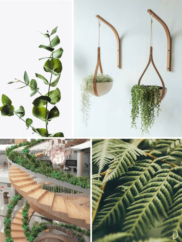 Moodboard depicting the concept of greenery in biophilic design. Wood hanging planters, a circular staircase with plants all along the handrail and two close up views of branches and leaves.