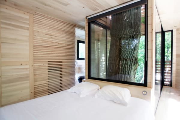 View of the bedroom, with the oak tree poking behind the bed.