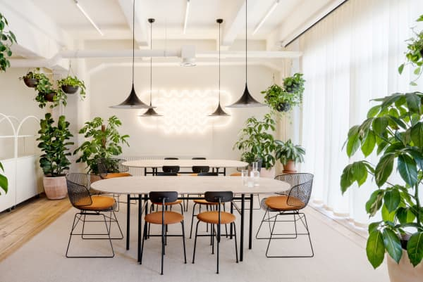 Conference room with plenty of plants and a welcoming feel.