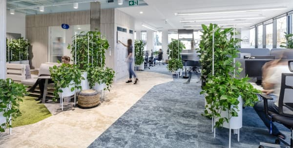 View of a biophilic office where planters of different heights introduce greenery while partitioning the space.