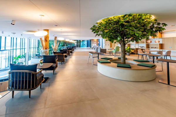 View of a biophilic office canteen designed around a tree.