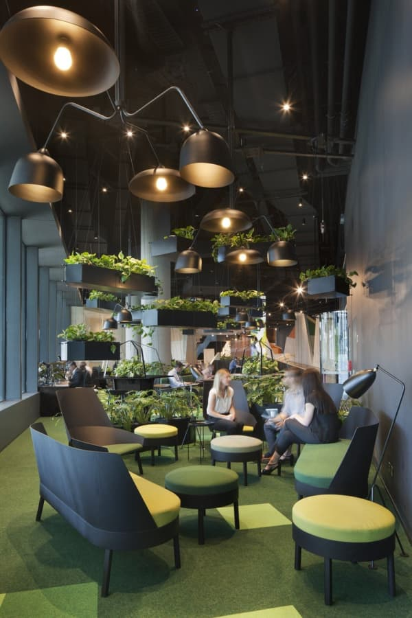 Open space office divided in smaller and cozier sitting areas using plants.