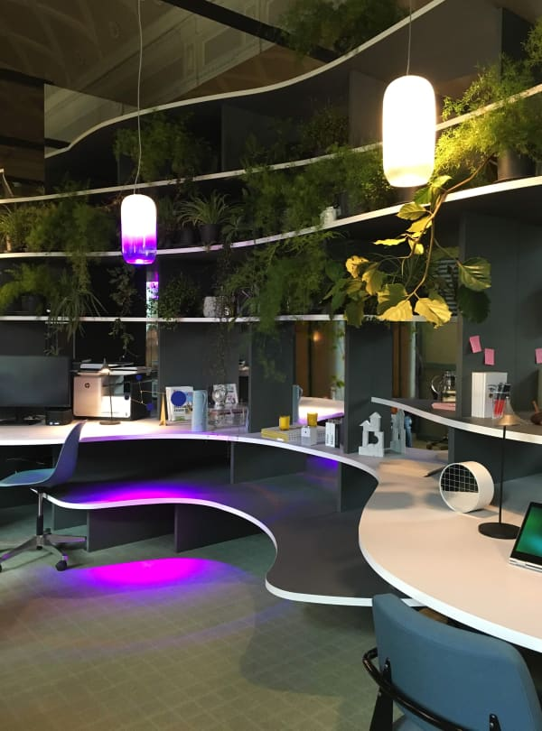View of a working station in a biophilic office with lush plants hanging from the walls.