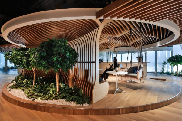 Biophilic office with curved wood ceiling recalling the shape of a tree and swings hanging from the ceiling.