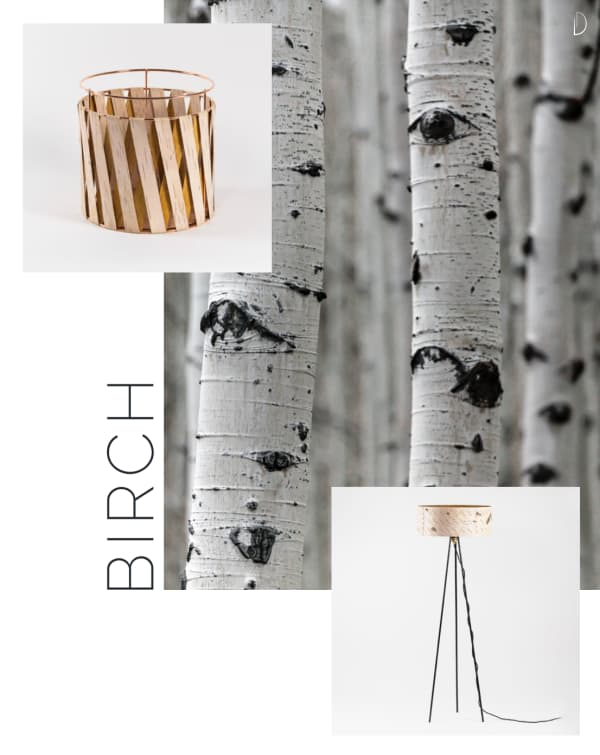 Birch bark home items: a floor lamp and a small basket.