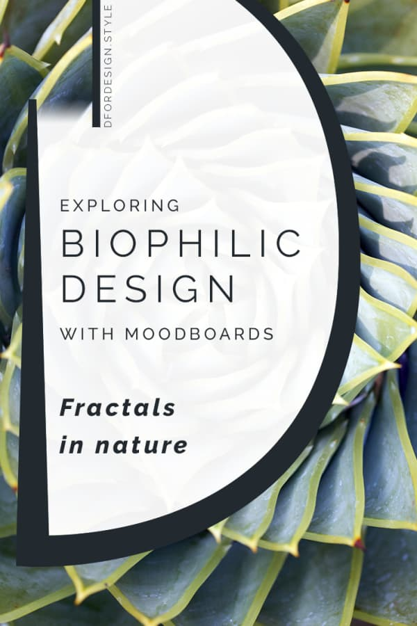 Biophilic moodboards: fractals in nature. Pin it.