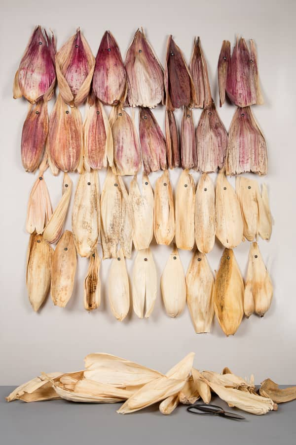 Corn husks hanging on a wall before being transformed.