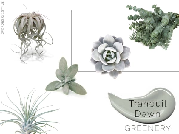 Moodboard showing all the above mentioned plants to add Tranquil Dawn with greenery.