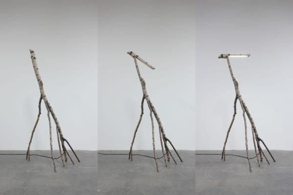 Floor lamp made out of a savaged tree trunk.