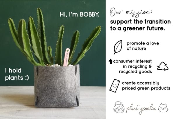 Shot of Bobby felt planter with a plant inside.