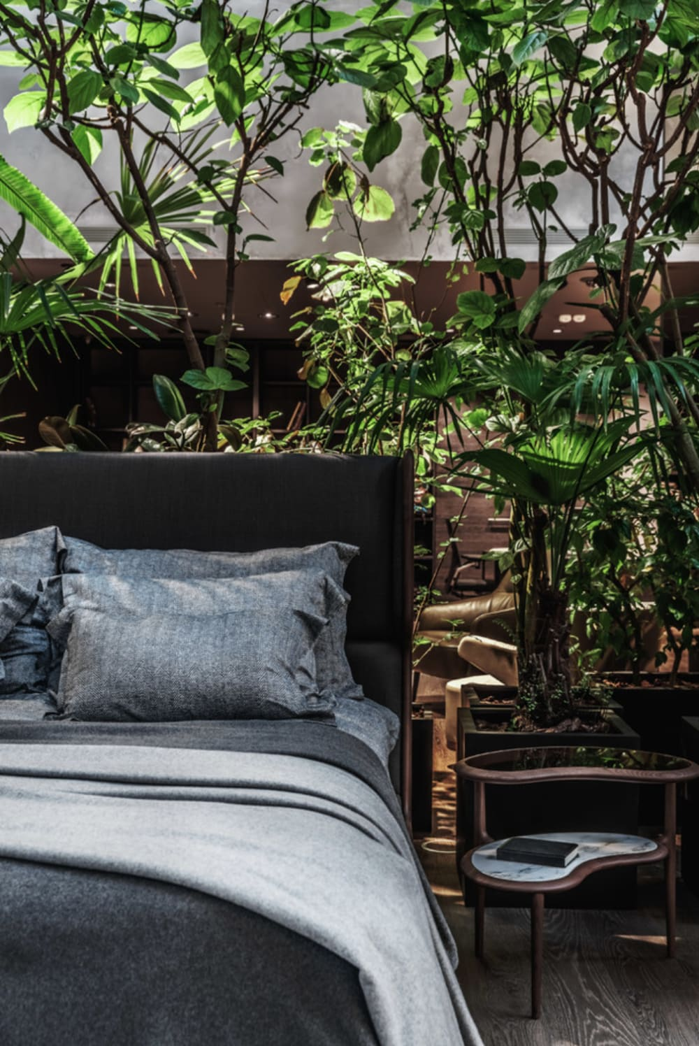 "View of a bed with a variety of plants behind it.<span class=""sr-only""> (opened in a new window/tab)</span>"