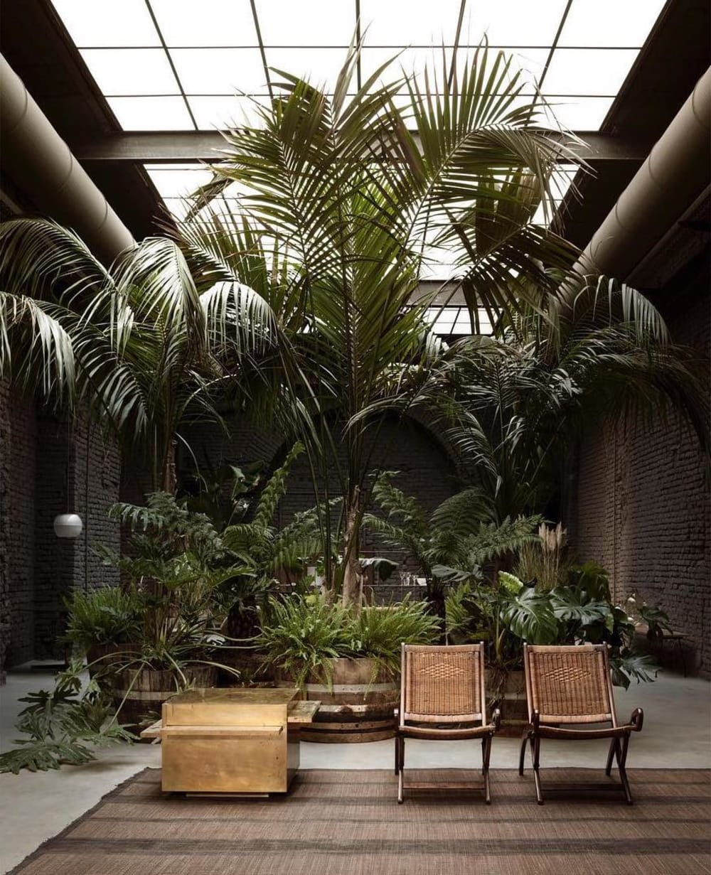 "A seating area with plants at different heights.<span class=""sr-only""> (opened in a new window/tab)</span>"