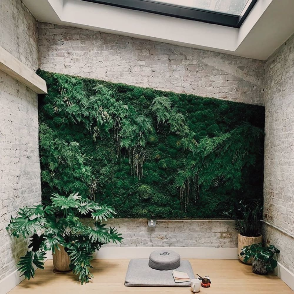 """Meditation space on a room with a huge green wall and plenty of plants around.<span class=""""sr-only""""> (opened in a new window/tab)</span>"""