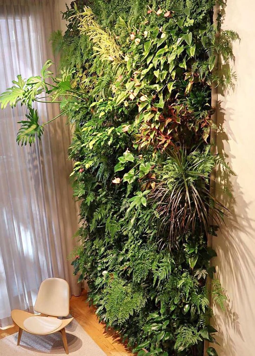 "Huge vertical garden in a living room.<span class=""sr-only""> (opened in a new window/tab)</span>"