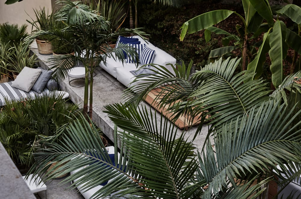 """Outdoor seating area shielded by plants.<span class=""""sr-only""""> (opened in a new window/tab)</span>"""