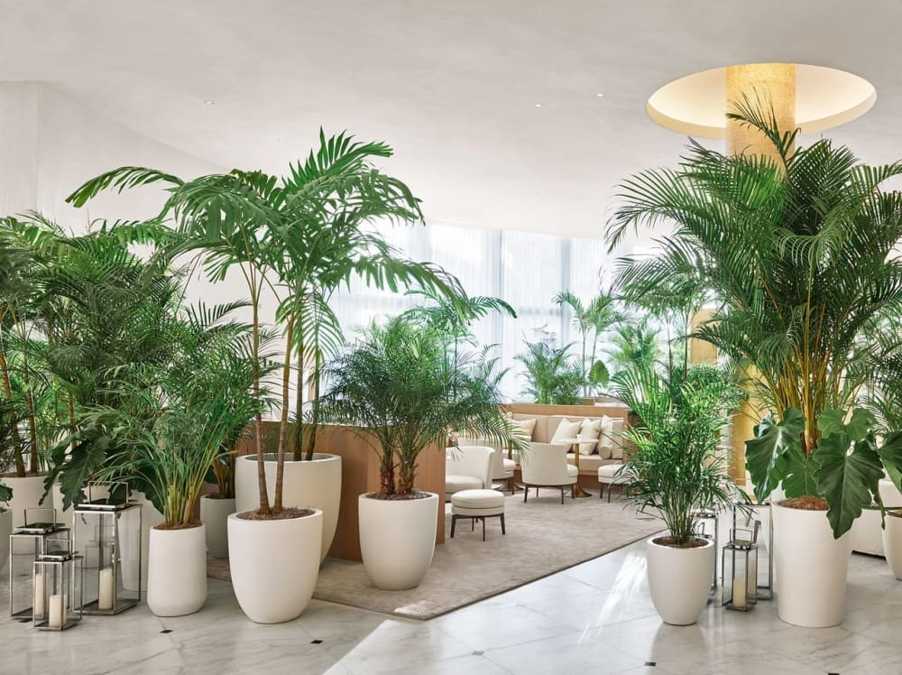 """Bar area with tables divided by tall plants.<span class=""""sr-only""""> (opened in a new window/tab)</span>"""