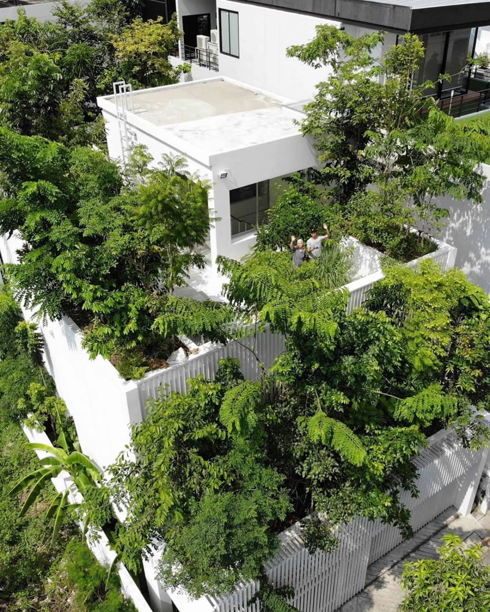 "Green building in Bangkok completely covered in plants.<span class=""sr-only""> (opened in a new window/tab)</span>"