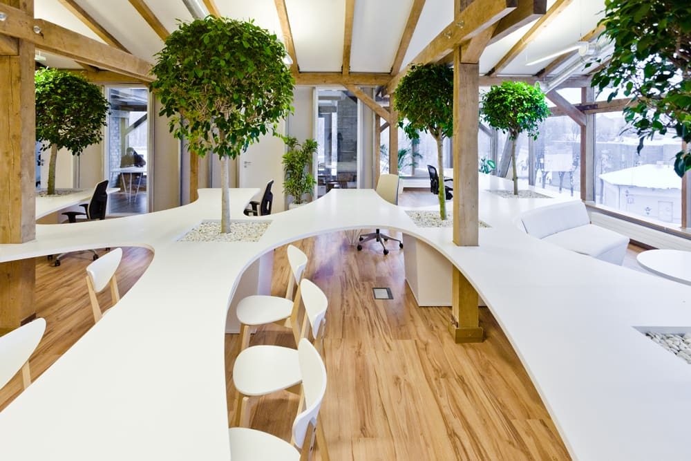 """Biophilic office with organic shaped desks and trees in between the tables.<span class=""""sr-only""""> (opened in a new window/tab)</span>"""