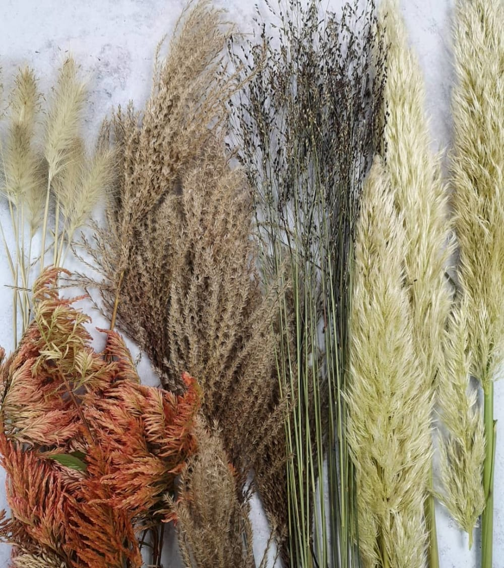 """A mix of dried grass on a table.<span class=""""sr-only""""> (opened in a new window/tab)</span>"""
