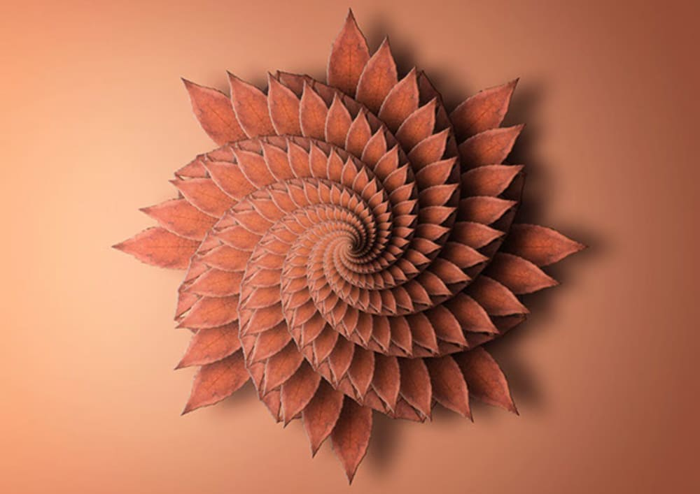 """Print reproducing the fractal spiral of a plant.<span class=""""sr-only""""> (opened in a new window/tab)</span>"""