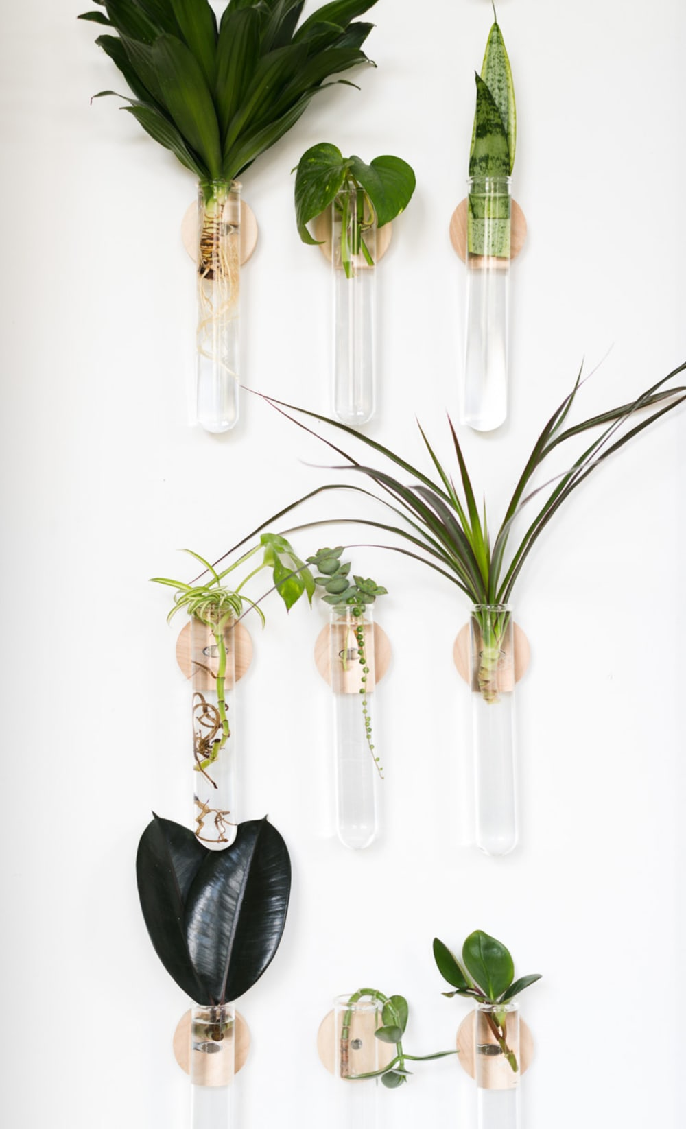 """Propagation wall made with wall mounted tubes.<span class=""""sr-only""""> (opened in a new window/tab)</span>"""