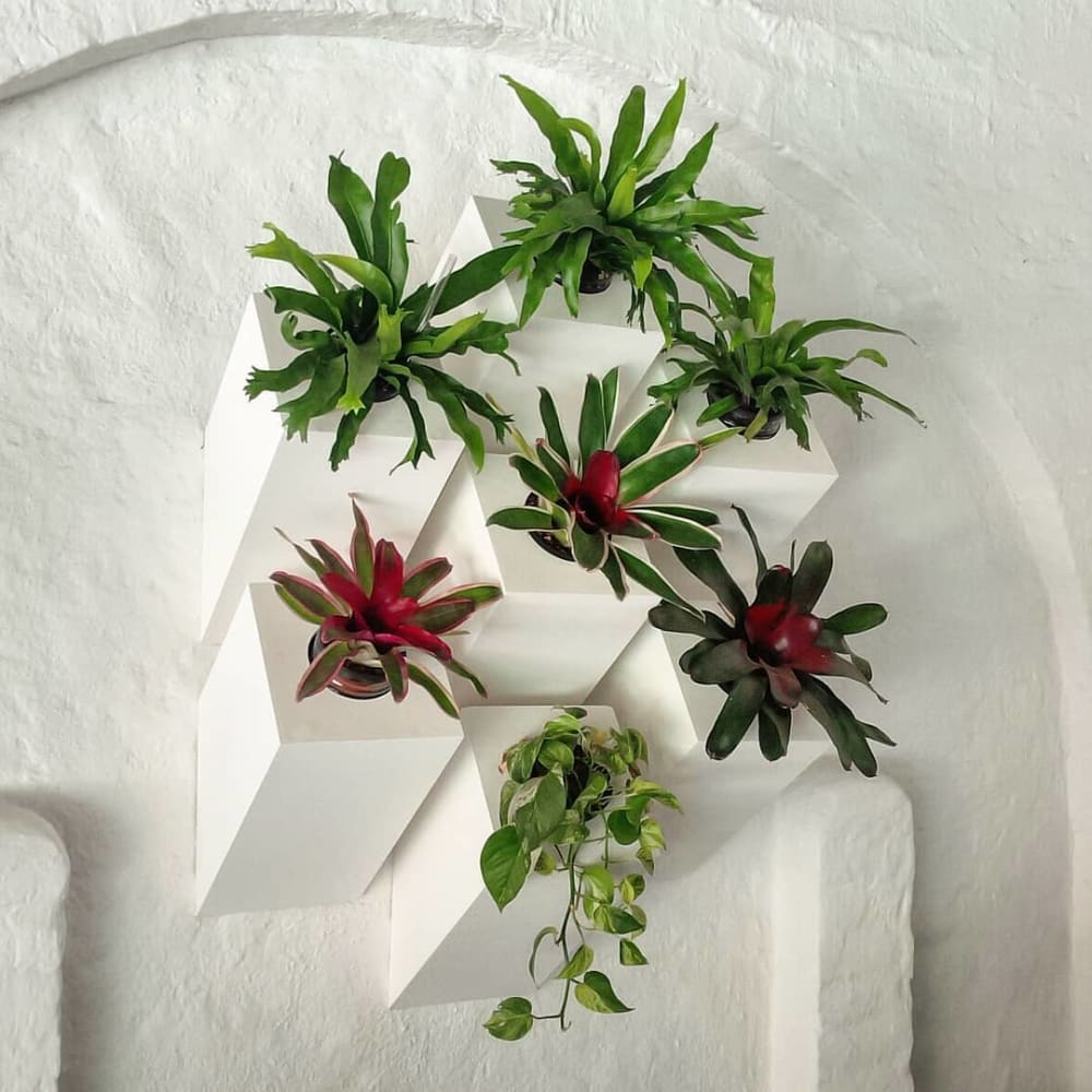 """Modular wall-mounted planters.<span class=""""sr-only""""> (opened in a new window/tab)</span>"""