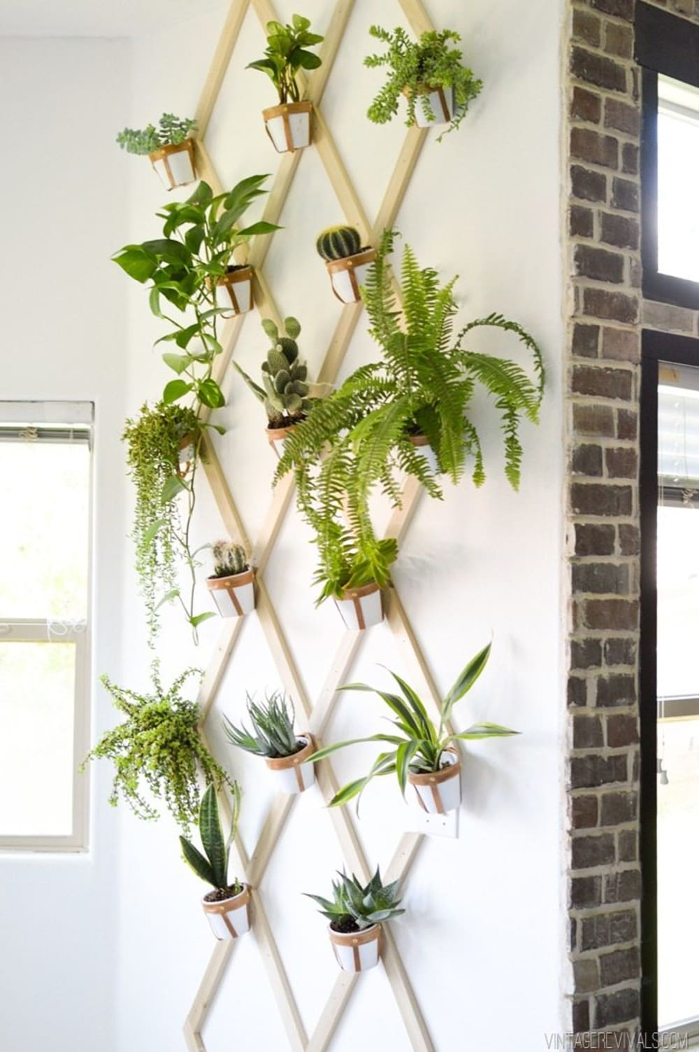 """Pots hung on a wall-mounted trellis.<span class=""""sr-only""""> (opened in a new window/tab)</span>"""