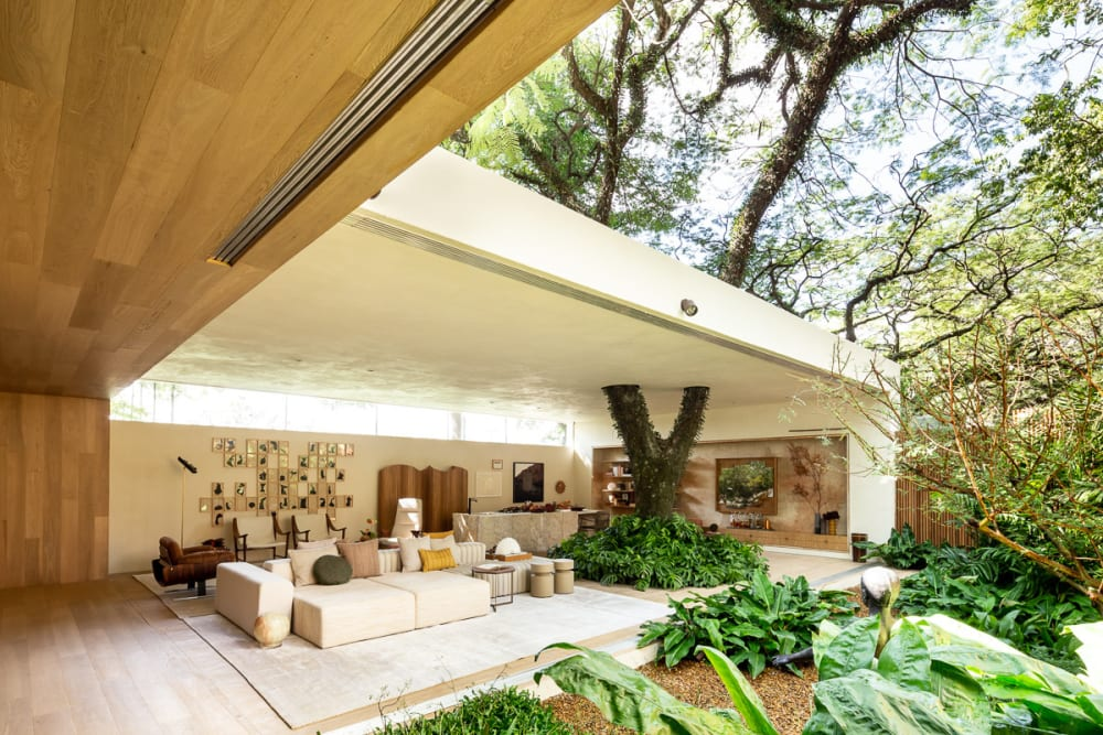 """Contemporary home built around a tree.<span class=""""sr-only""""> (opened in a new window/tab)</span>"""