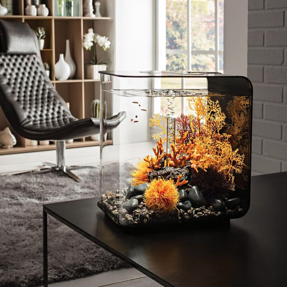 """Small aquarium with water plants on a coffee table.<span class=""""sr-only""""> (opened in a new window/tab)</span>"""