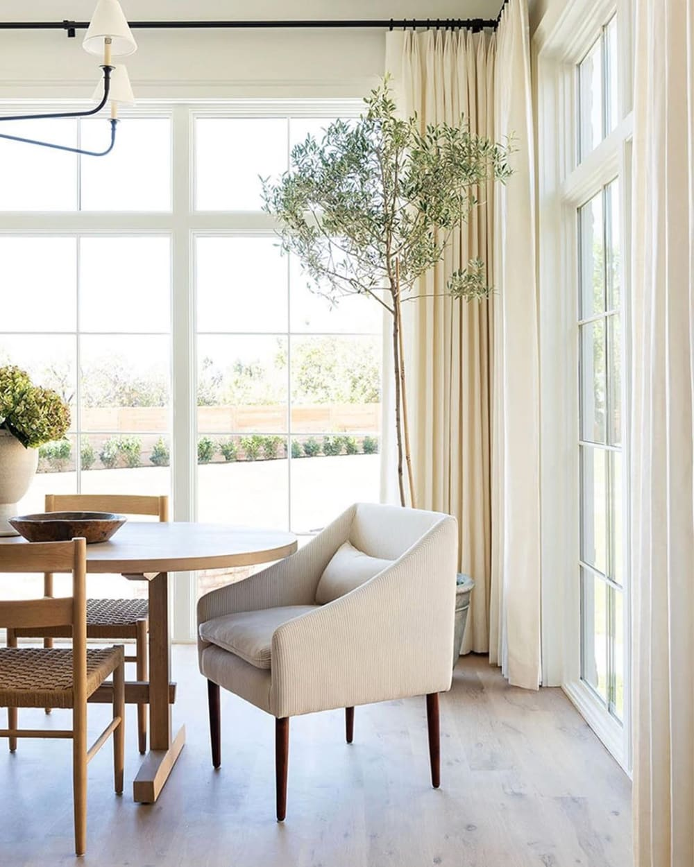 """Olive tree in a contemporary dining room.<span class=""""sr-only""""> (opened in a new window/tab)</span>"""