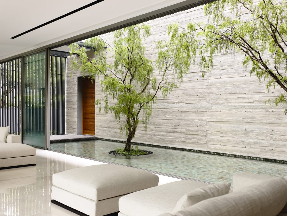 """Contemporary living room with trees planted into the internal courtyard.<span class=""""sr-only""""> (opened in a new window/tab)</span>"""