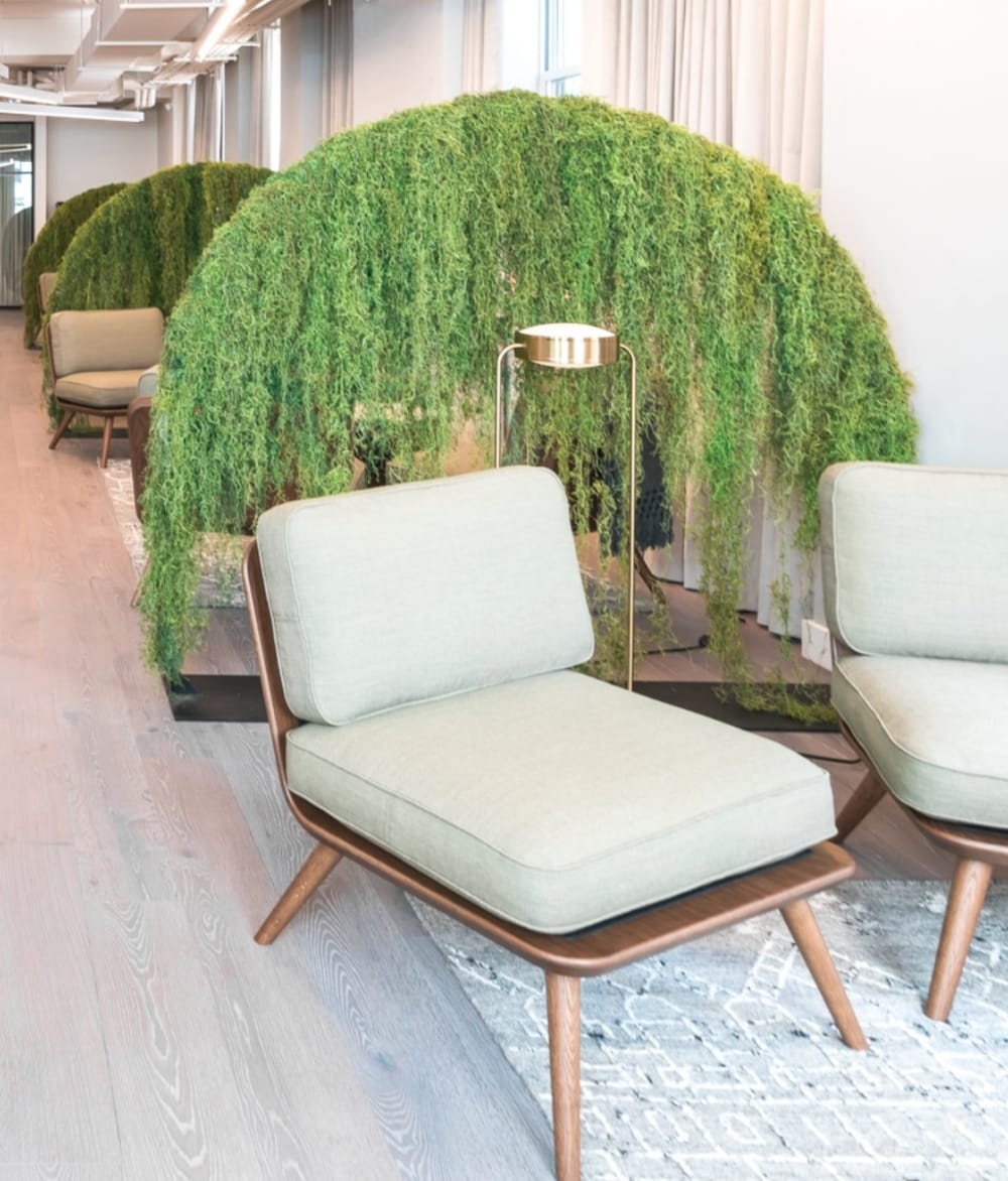 """Room divider made with draping plants secured on an arched structure.<span class=""""sr-only""""> (opened in a new window/tab)</span>"""