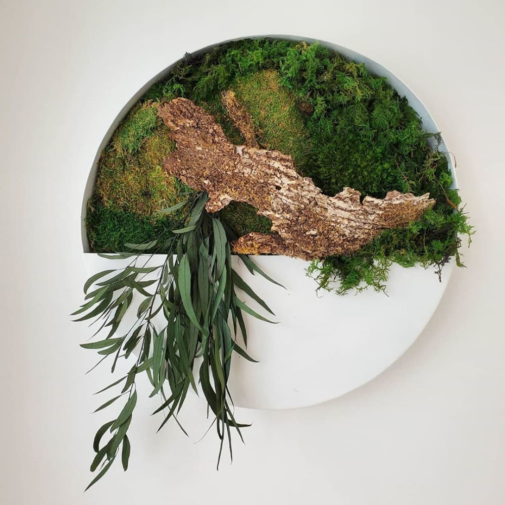 """Wall vase filled with moss and living plants.<span class=""""sr-only""""> (opened in a new window/tab)</span>"""