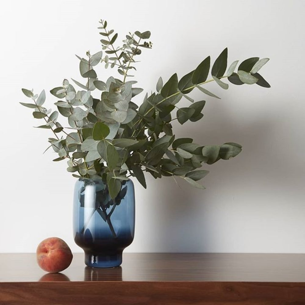 "Eucalyptus branches in a blue vase.<span class=""sr-only""> (opened in a new window/tab)</span>"