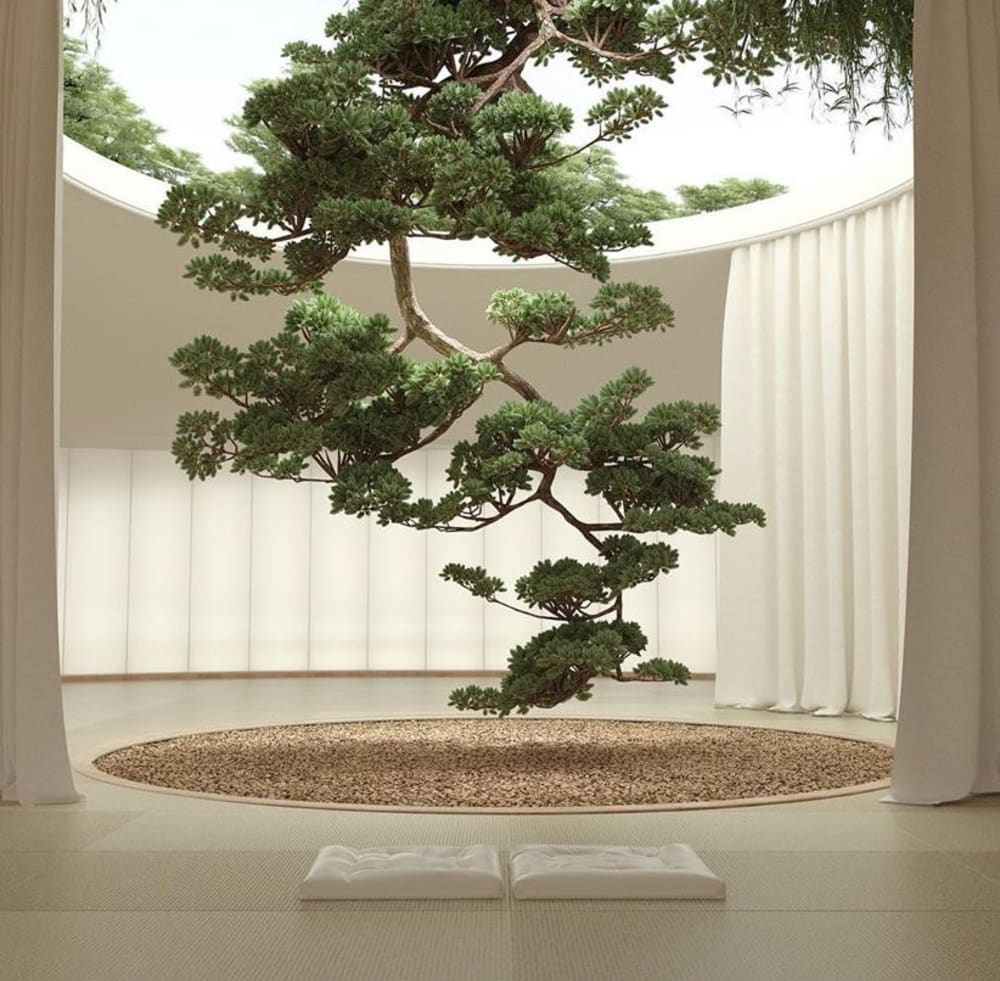 """Huge tree entering an interior from a round opening in the ceiling.<span class=""""sr-only""""> (opened in a new window/tab)</span>"""